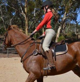 Cómo cuidar un caballo - Ejercicio